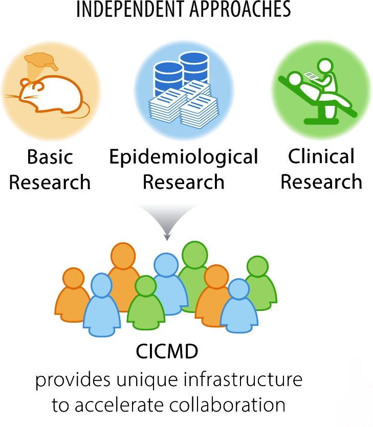 CICMD Areas of expertise